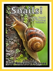Just Snail Photos! Big Book of Photographs & Pictures of Snails, Vol. 1 ebook by Big Book of Photos