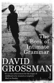 The Book Of Intimate Grammar ebook by David Grossman