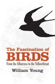 The Fascination of Birds ebook by William Young