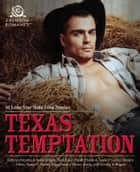 Texas Temptation - 10 Lone Star State Love Stories ebook by Kathryn Brocato, Kristina Knight, Tami Lund,...