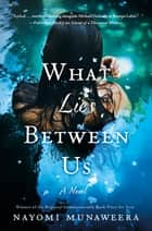 What Lies Between Us - A Novel ebook by Nayomi Munaweera