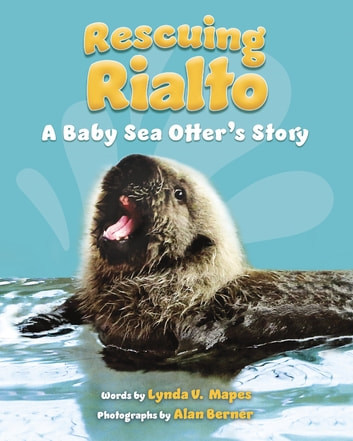 Rescuing Rialto: A Baby Sea Otter's Story ebook by Lynda V. Mapes