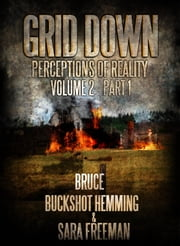 Grid Down Perception of Reality - Grid Down Volume 2 ebook by Bruce Buckshot Hemming