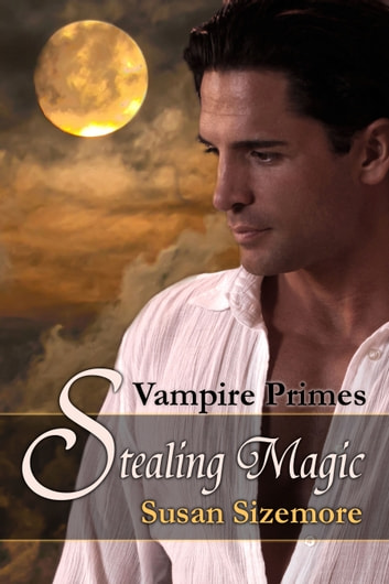 Stealing Magic ebook by Susan Sizemore