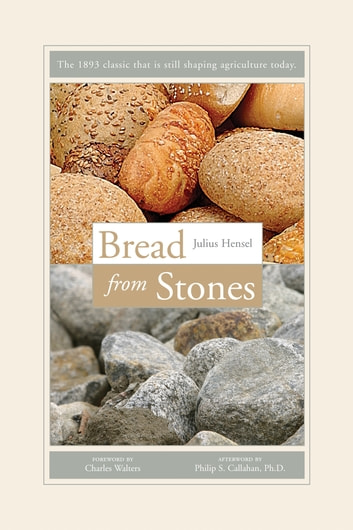 Bread from Stones ebook by Julius Hensel
