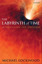 The Labyrinth of Time - Introducing the Universe ebook by Michael Lockwood