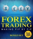 Forex Trading Making Pip By Pip - A Step-By-Step Day Trading Strategy ebook by Speedy Publishing