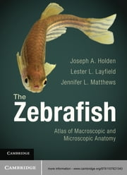 The Zebrafish - Atlas of Macroscopic and Microscopic Anatomy ebook by Jennifer L. Matthews,Joseph A. Holden,Lester L. Layfield