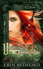 The Underground Series - The Lost Fae Princess ebook by Erin Bedford