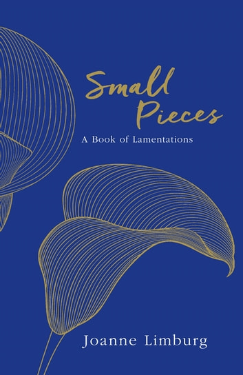 Small Pieces - A Book of Lamentations ebook by Joanne Limburg