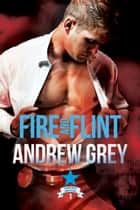 Fire and Flint ebook by