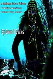 A Challenge to be a Unicorn, A Native American Indian Pony book 2