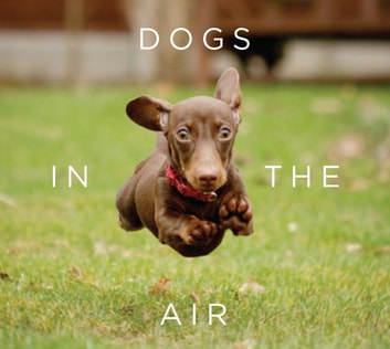 Dogs in the Air ebook by Jack Bradley