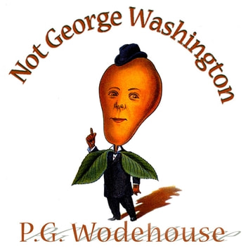 Not George Washington - An Autobiographical Novel audiobook by P. G. Wodehouse,Herbert Westbrook