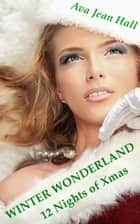 Winter Wonderland: 12 Nights of Christmas ebook by Ava Jean Hall