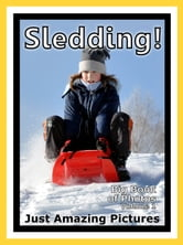 Just Snow Sleds Photos! Big Book of Photographs & Pictures of Sled & Sledding, Vol. 1 ebook by Big Book of Photos