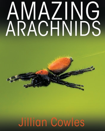 Amazing Arachnids ebook by Jillian Cowles