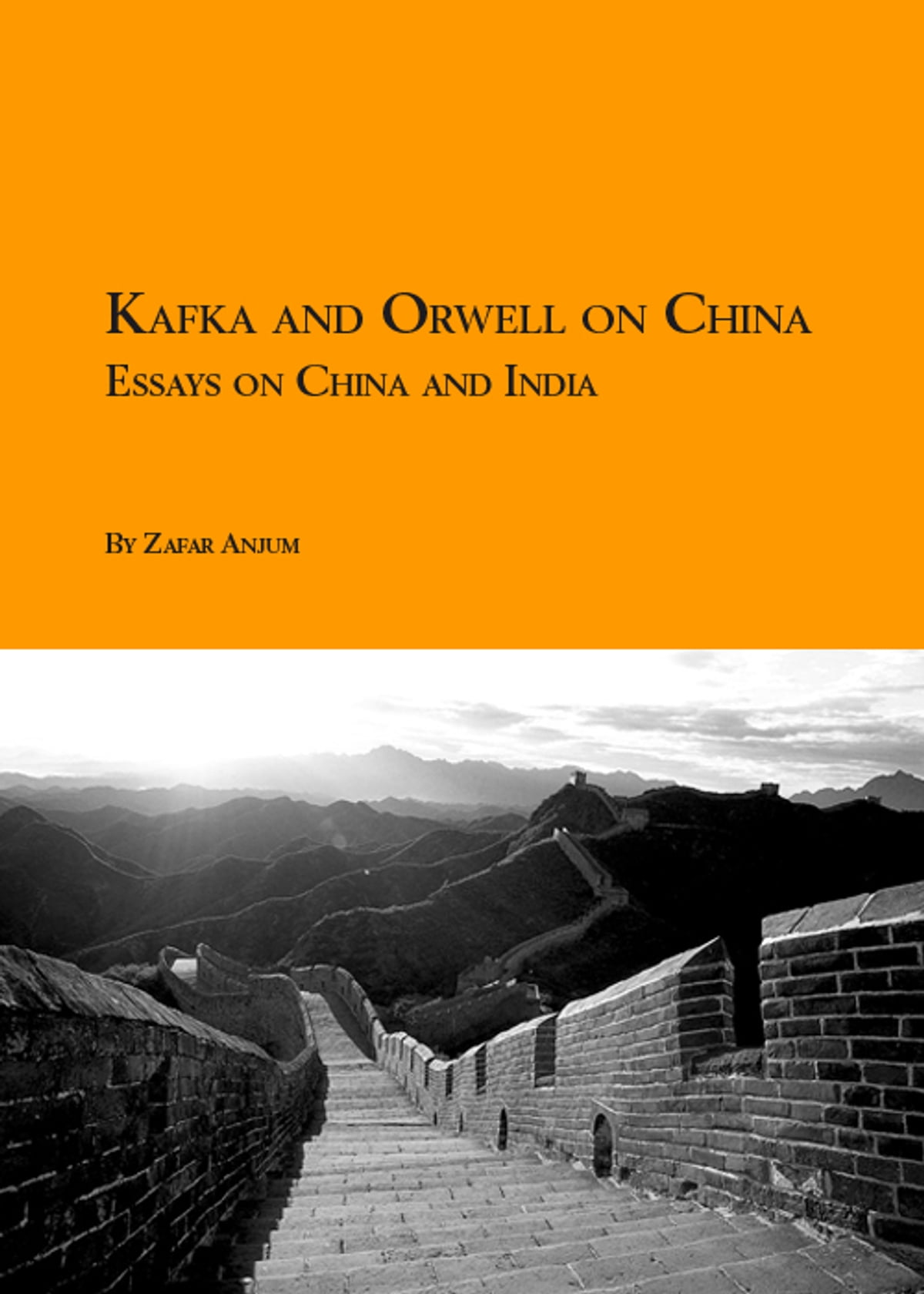 kafka and orwell on essays on and ebook by kafka and orwell on essays on and ebook by zafar anjum 9789810888022 kobo
