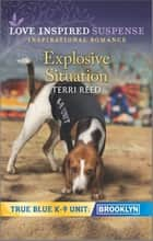 Explosive Situation ebook by Terri Reed