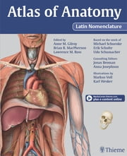 Atlas of Anatomy Latin Nomenclature version ebook by Anne M Gilroy,Brian R MacPherson,Lawrence M Ross