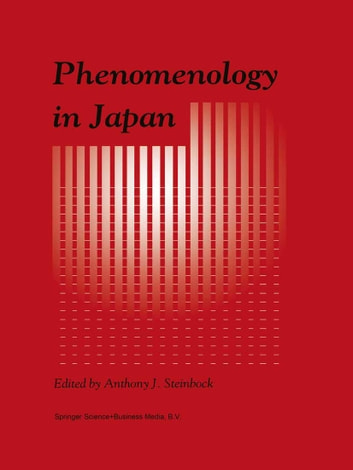 Phenomenology in Japan ebook by