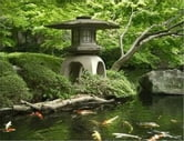 A Beginners Guide to Japanese Gardens ebook by Ramon Sullivan