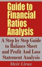 Guide to Financial Ratios Analysis: A Step by Step Guide to Balance Sheet and Profit and Loss Statement Analysis ebook by Meir Liraz