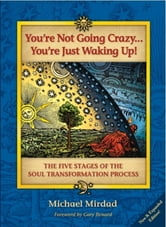 You're Not Going Crazy . . . You're Just Waking Up! - The Five Stages of the Soul Transformation Process ebook by Michael Mirdad