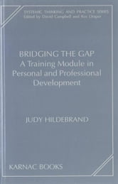 Bridging the Gap - A Training Module in Personal and Professional Development ebook by Hildebrand