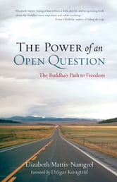 The Power of an Open Question ebook by Elizabeth Mattis-Namgyel