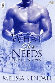 What She Needs (1Night Stand) ebook by Melissa Kendall