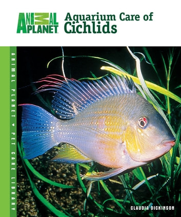 Aquarium Care of Cichlids ebook by Claudia Dickinson