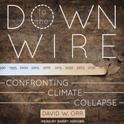 Down to the Wire - Confronting Climate Collapse audiobook by David W. Orr