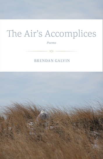 The Air's Accomplices - Poems ebook by Brendan Galvin