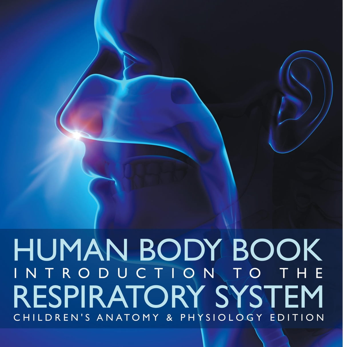 Human Body Book Introduction To The Respiratory System