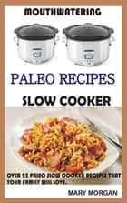 Mouthwatering Paleo Recipes Slow Cooker Over 25 Paleo Slow Cooker Recipes That Your Family Will Love ebook by Mary Morgan