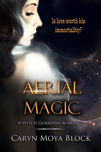 Aerial Magic ebook by Caryn Moya Block