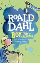 Boy ebook by Roald Dahl,Quentin Blake