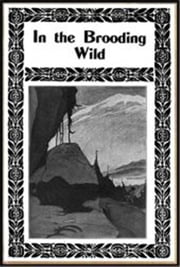 In The Brooding Wild ebook by Ridgwell Cullum