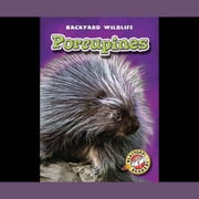 Porcupines audiobook by Emily Green