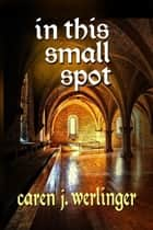 In This Small Spot ebook by