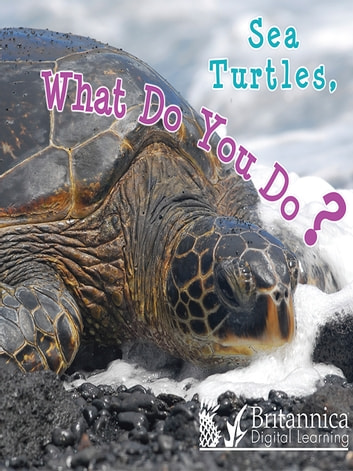 Sea Turtles, What Do You Do? ebook by Holly Karapetkova