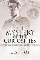 The Mystery of the Curiosities ebook by
