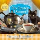 No Grater Danger audiobook by Victoria Hamilton