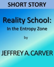 Reality School: In the Entropy Zone ebook by Jeffrey A. Carver