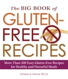 The Big Book of Gluten-Free Recipes - More Than 500 Easy Gluten-Free Recipes for Healthy and Flavorful Meals ebook by Kimberly A Tessmer