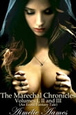 The Marechal Chronicles: Volumes I, II, and III (A Magic, Erotic Medieval Fantasy Tale)