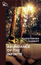 Abundance of the Infinite ebook by Christopher Canniff
