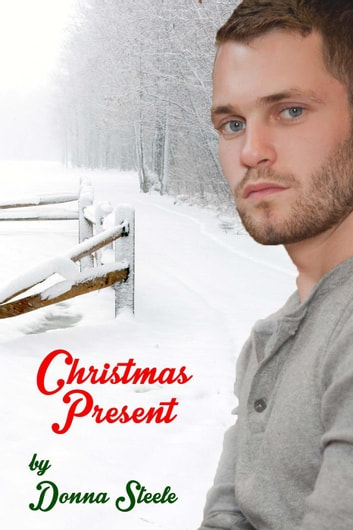 Christmas Present ebook by Donna Steele