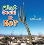 What Could It Be? ebook by Gail Bornfield